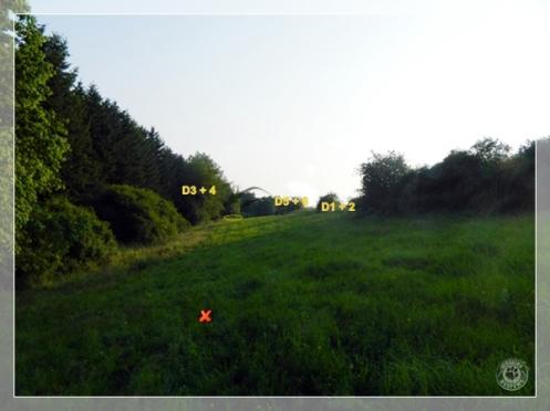 Training2013-07-13a7
