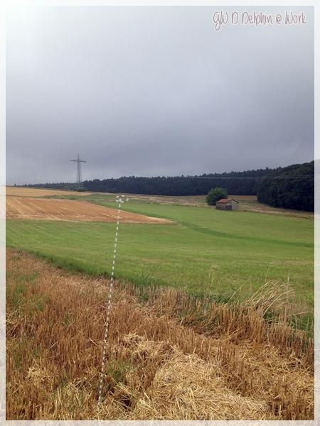 Gelände1Laufweg