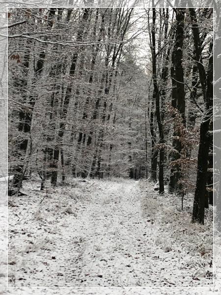 02_erster Schnee