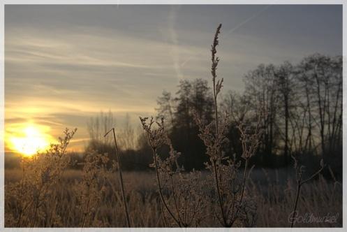 2019_02_17_Landschaft