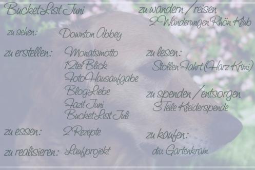 Hetty_1bucketlist_juni