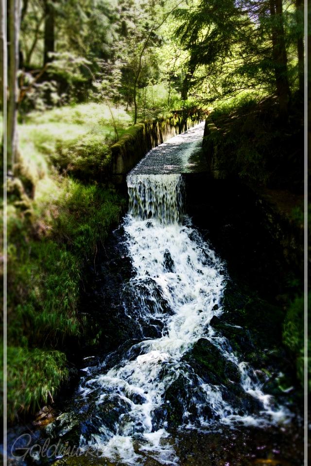 Wasserlauf_1