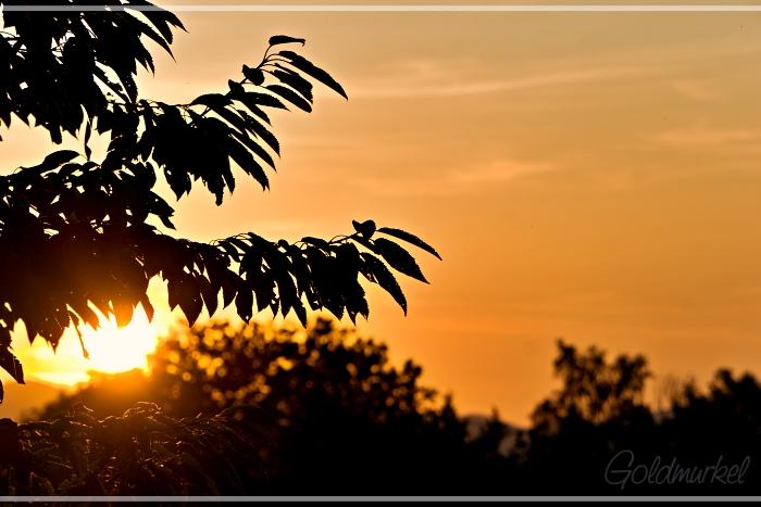 Sonnenaufgang_1