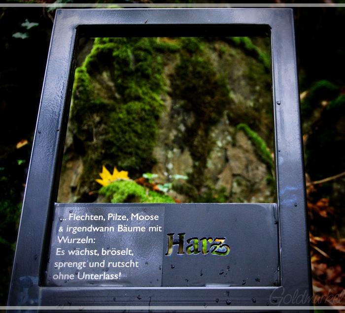 Harz_1