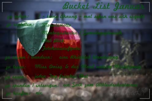 Bucket List januar20Transp