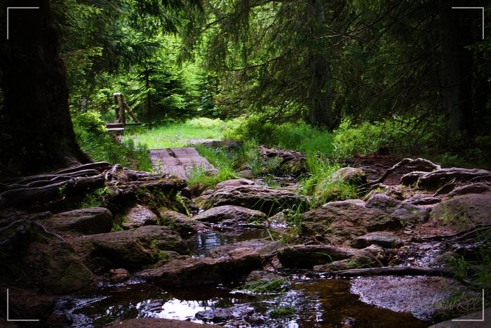 Märchenweg_2